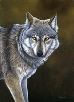 In The Eyes Of The Wolf Fine Art Print