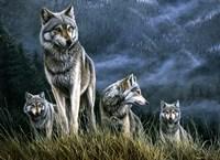 Wolf Pack Fine Art Print