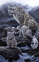 Mother & Cubs Fine Art Print