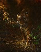 Tiger Odyssey Fine Art Print