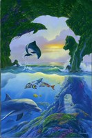Seven Dolphins Fine Art Print