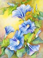 A Morning Glory Vine Fine Art Print