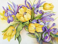 Yellow Tulips with Blue Iris Fine Art Print