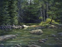 Forest River Fine Art Print