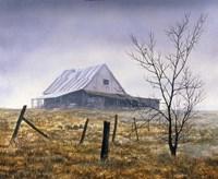 Ground Fog Fine Art Print