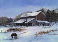 In a Winter Blue Fine Art Print