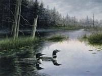 Misty Morn Fine Art Print