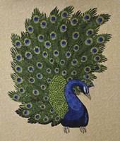 Peacock Stitched Fine Art Print
