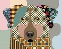Australian Shepherd Dog Fine Art Print