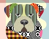 American Bulldog Fine Art Print