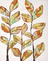 Foliage 1 Fine Art Print
