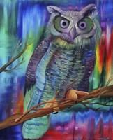 Rainbow Owl Fine Art Print