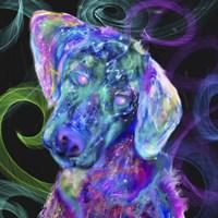 Puppy12 Fine Art Print