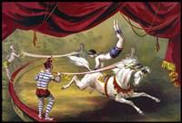 Circus 13 Fine Art Print