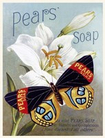 Pears' soap Fine Art Print