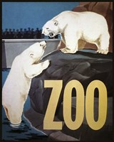 Zoo Fine Art Print