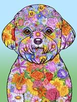 Flowers Bichon Frise Fine Art Print