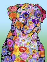 Flowers Boxer Fine Art Print