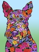 Flowers Scottish Terrier Fine Art Print
