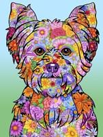 Flowers Yorkie Puppycut Fine Art Print