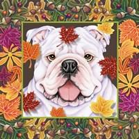 Autumn Bulldog Fine Art Print