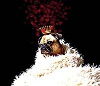 Royal Love Pup - Pug Fine Art Print