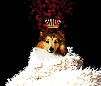 Royal Love Pup - Sheltie Framed Print