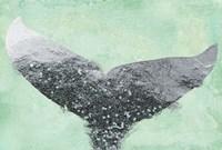 A Mermaid's Tail I Fine Art Print