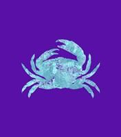 Sponge Crab Aqua Framed Print