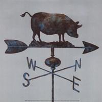 Rural Relic Pig Fine Art Print