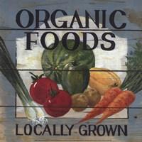 Organic Foods Fine Art Print