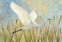 Snowy Egret in Flight v2 Fine Art Print