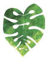 Palm Leaf 3 Fine Art Print