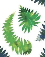 Palm Leaves Composition Fine Art Print