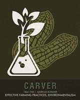 Carver Fine Art Print
