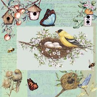 Birds & Bees Color-Blocks Green Fine Art Print