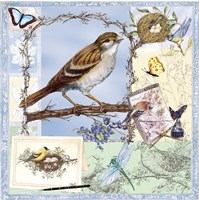 Birds & Butterfly Sketches-Blue Fine Art Print