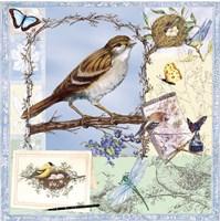 Birds & Butterfly Sketches-Blue Fine Art Print