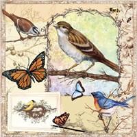 Birds, Butterflys, Bees-Pastels Fine Art Print