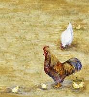 Chicken Yard Fine Art Print