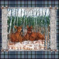 Birch Frame Plaid- Deer Nature Fine Art Print