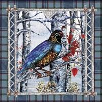 Birch Frame Plaid-Partridge Fine Art Print
