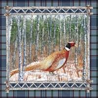 Birch Frame Plaid-Pheasant Fine Art Print