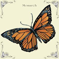 Butterfly Monarch Fine Art Print