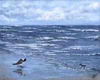 Beach Reflections Fine Art Print