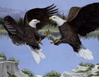 War Eagles Fine Art Print