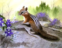 Chipmonk Fine Art Print