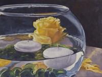 Yellow Rose Fine Art Print