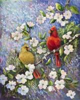 Cardinal Impressions Fine Art Print