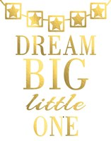 Dream Big Little One Fine Art Print